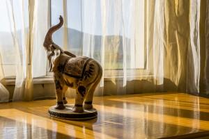 hotel markita apart 301 elephant